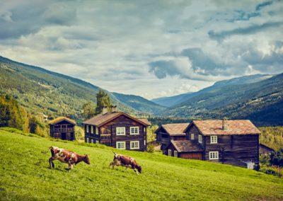 Heidal Gudbrandsdalen fredet bebyggelse